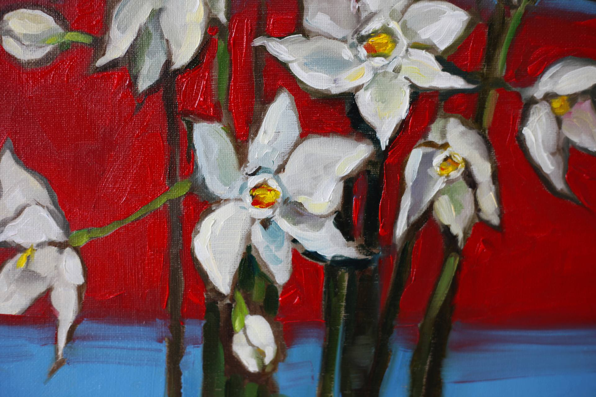 The Narcissuses
